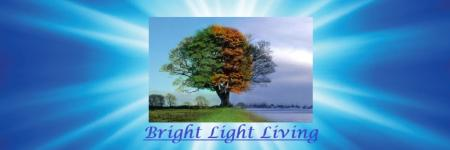 Zoals de boom( bright light living )