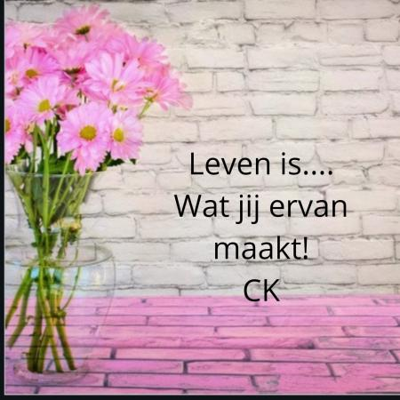 Leven is..