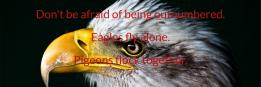 Don't be afraid of being outnumbered. Eagles fly alone. Pigeons flock together.