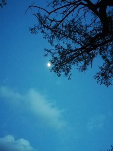 Sky and moon