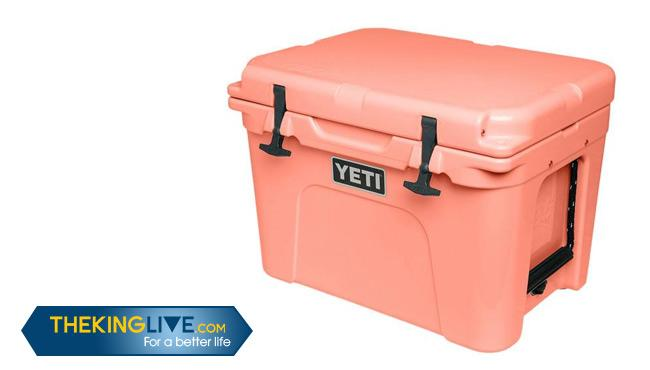 How to Pick the Best Camping Coolers on the Market: Buying Guide