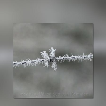 Frosted barb wire