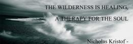 THE WILDERNESS IS HEALING, A THERAPY FOR THE SOUL Nicholas Kristof -