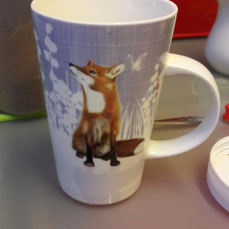 Foxes everywhere!