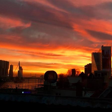 Magical Sunsets in Rotterdam