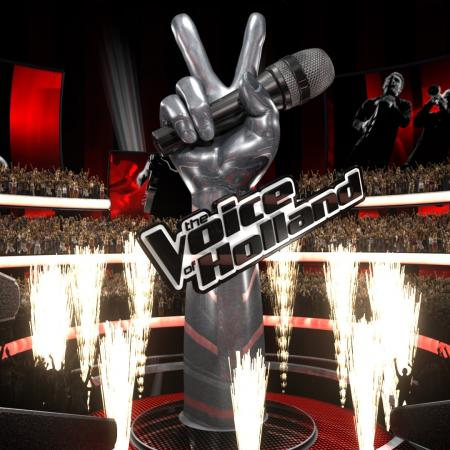 the voice.......