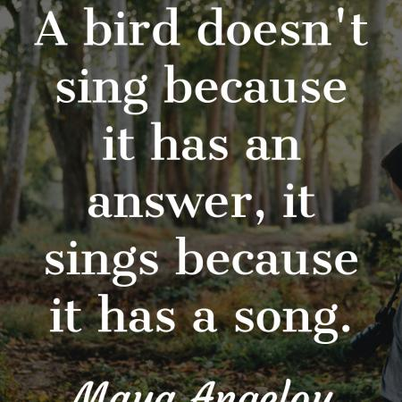 Sing your own song❤