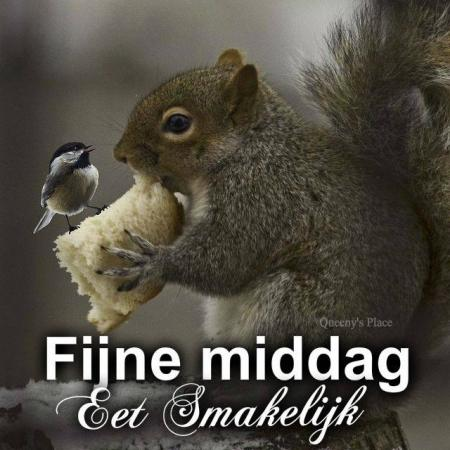 fijne middag en enjoy je lunchy