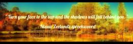 Turn your face to the sun and the shadows will fall behind you.  - Nieuw Zeelands spreekwoord