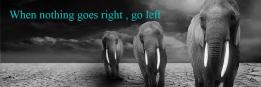 When nothing goes right , go left