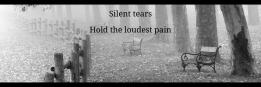 Silent tears Hold the loudest pain