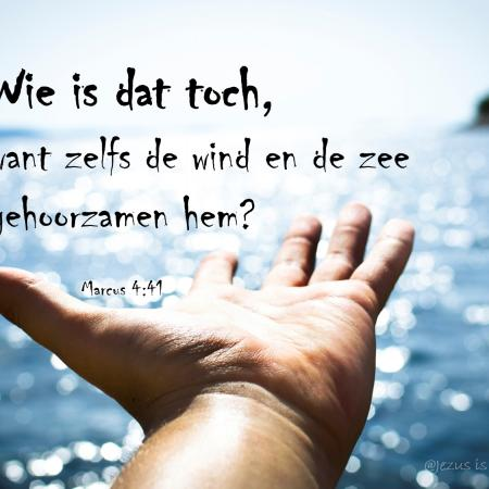 Wie is toch die man...