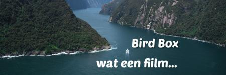 Bird box, wat een film...