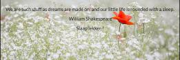 We are such stuff as dreams are made on; and our little life is rounded with a sleep.  William Shakespeare Slaap lekker !