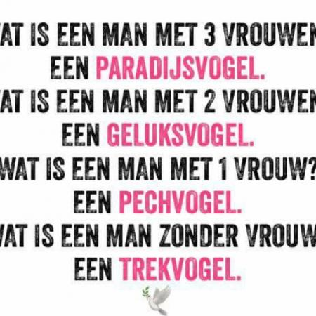 Wat is een man