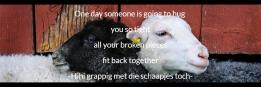 One day someone is going to hug you so tight all your broken pieces fit back together -Hihi grappig met die schaapjes toch-