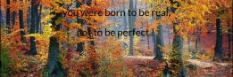 you were born to be real, not to be perfect !