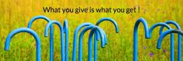 What you give is what you get !
