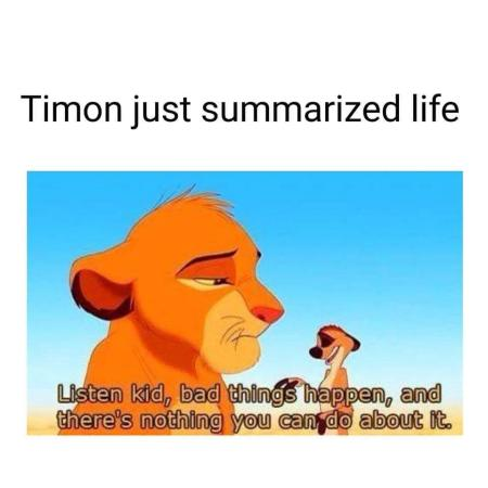 Lion king life quote