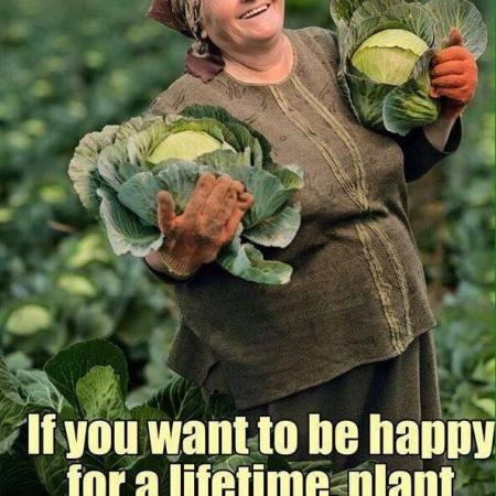 If you want to be happy, plant a garden!