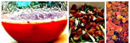 Recipes (PART II): Rhubarb - Salad, Syrup, and Salsa