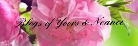 Blogs of Yoors & Neance