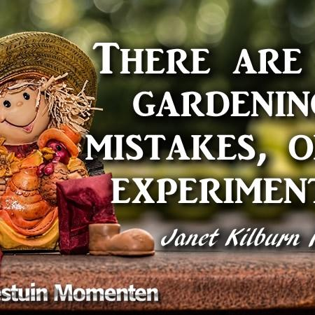 There Are No Gardening Mistakes, Only Experiments...