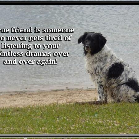 A true friend...