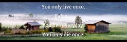 You only live once. False... You live everyday. You only die once.