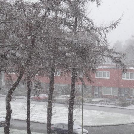 It's Snowing in Emmen, Drenthe, the Netherlands