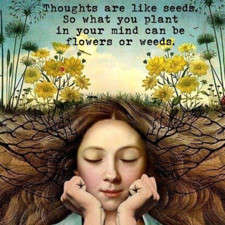 Thoughts are like seeds...