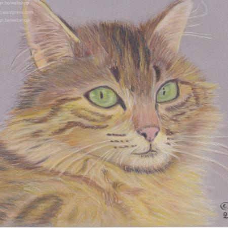 Poes in pastel