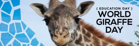 21 Juni - De Internationale Dag van de Giraffe